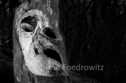 Holzstamm mit Gesicht