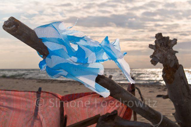 Strandgut am Weststrand der Ostseeküste