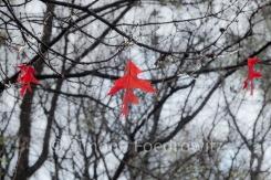 drei Ahornblätter hängen an den Zweigen