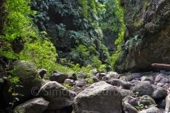 begrünte Schlucht mit großen Steinen am Boden