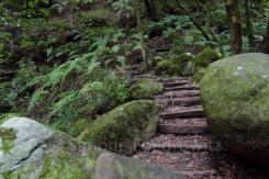 Weg mit Treppenstufen und Felsen