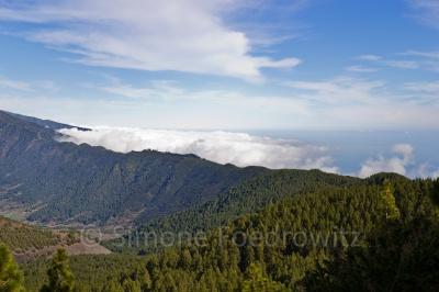 Wolken ziehen die mit Kiefern bewachsenen Berge hoch