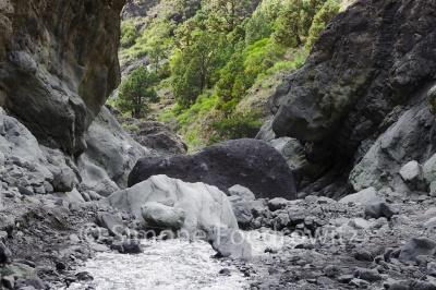 Flussbett mit Steinen
