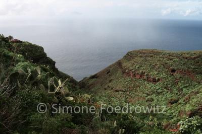 bewachsende Steilküste