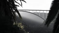 Eine Brücke führt über eine diesige Schlucht