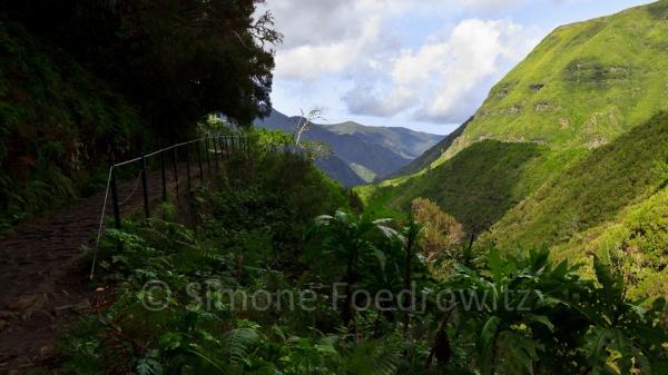 Weg vor bewachsene grünen Berghängen