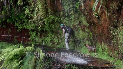 Mann mit Hund durchläuft einen Wasserfall
