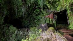 Wellblechunterstand an farnbewachsener Felswand