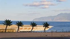 Palmen vor einem Hubschrauberlandeplatz am Meer