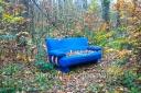blaues Sofa im Wald