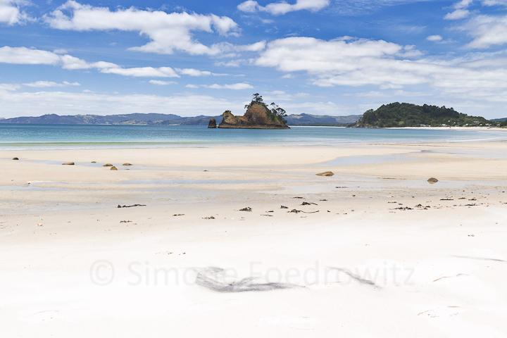 A-0160-whangapoua-pungapunga-island-new-zealand
