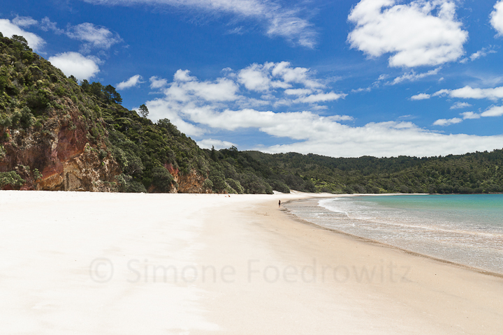 A-0163-new-chums-beach-new-zealand