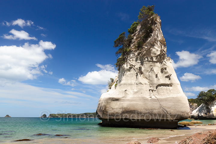 A-0164-cathedral-cove-beach-new-zealand