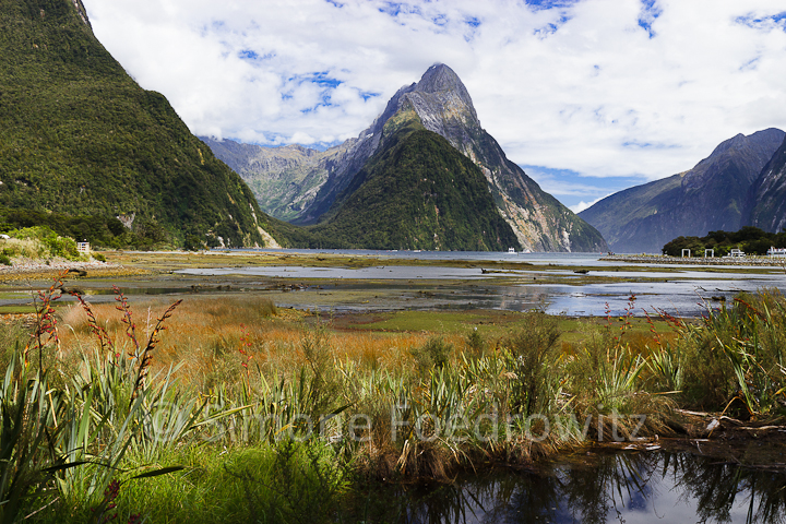 A-0174-milford-sound-new-zealand