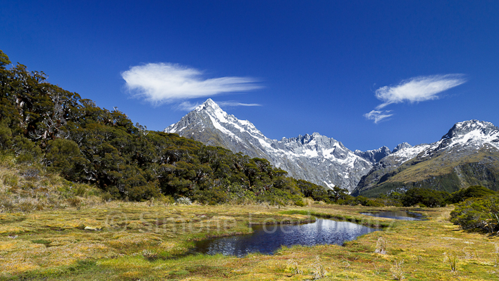 A-0175-key-summit-alpine-walk-new-zealand