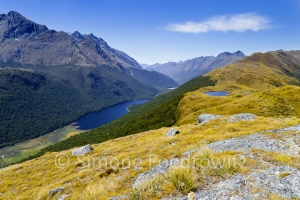 A-0180-key-summit-track-livingstone-mountains-1086m-lake-mckellar-greenstone-valley-new-zealand