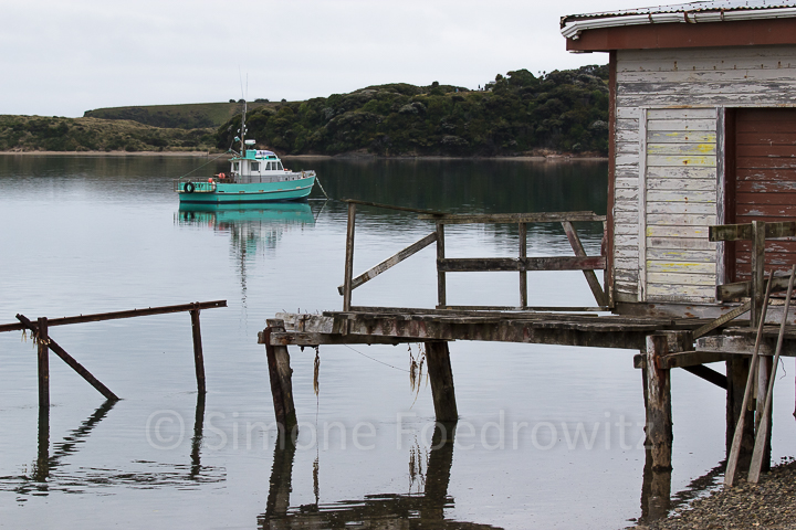 A-195-waikawa-harbour-boat-new-zealand