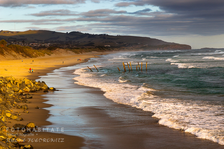A-206-dunedin-st-clair-beach-new-zealand