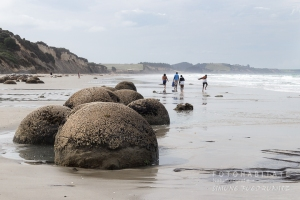 A-210-moeraki-boulders-stones-new-zealand