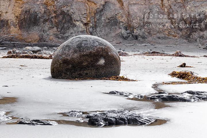 A-212-moeraki-boulder-stone-new-zealand