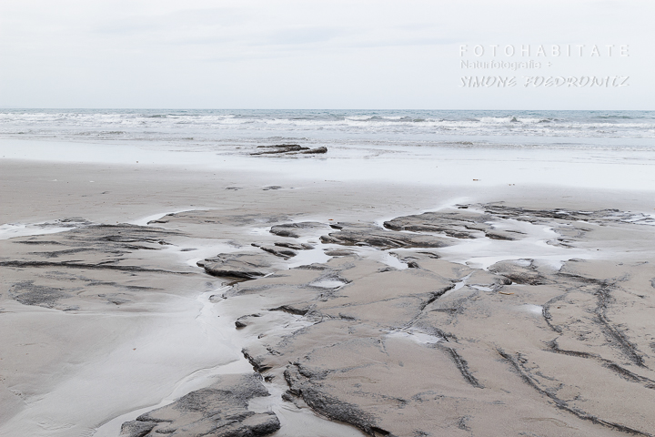 A-214-koekohe beach-new-zealand