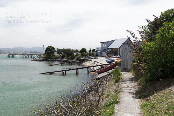 A-215-moeraki-village-new-zealand