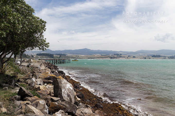 A-217-moeraki-village-new-zealand