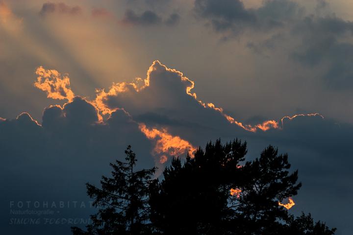 a-280_wolken-gewitter-clouds-thunderstorm