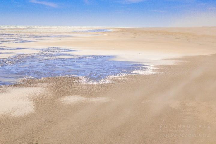 Wattenmeer mit Prielen