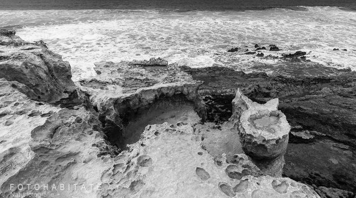 Kalkstein in Toeilettenform an Küste in schwarzweiß