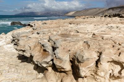 kalkhalttiger weißer Sandboden an Küste