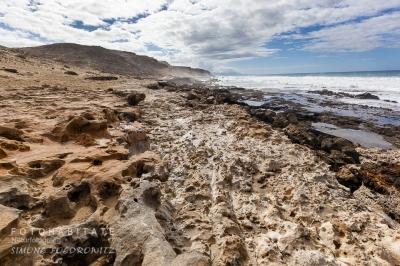 kalkhalttiger Sandboden an Küste