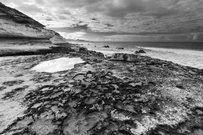 kalkhalttiger Sandboden an Küste in schwarzweiß