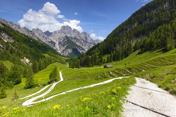 Weg auf einer grünen Alm vor Bergmassiv