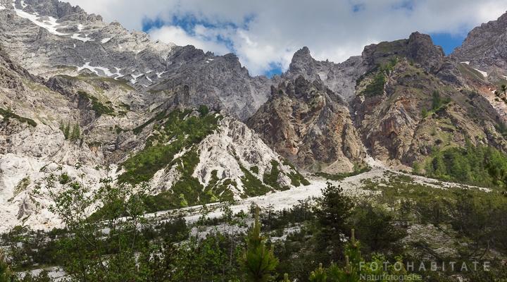 Bergkette mit weißem Geröll und Bäumen