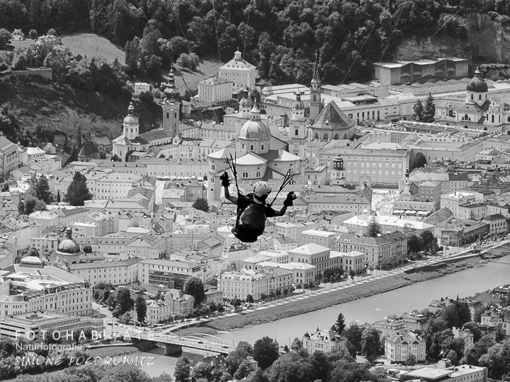 Paragleiter über der Stadt Salzburg